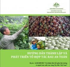 """Dự án AGB/2009/053 """"Cải thiện liên kết giữa thị trường và người sản xuất rau vùng Tây Bắc Việt Nam"""""""